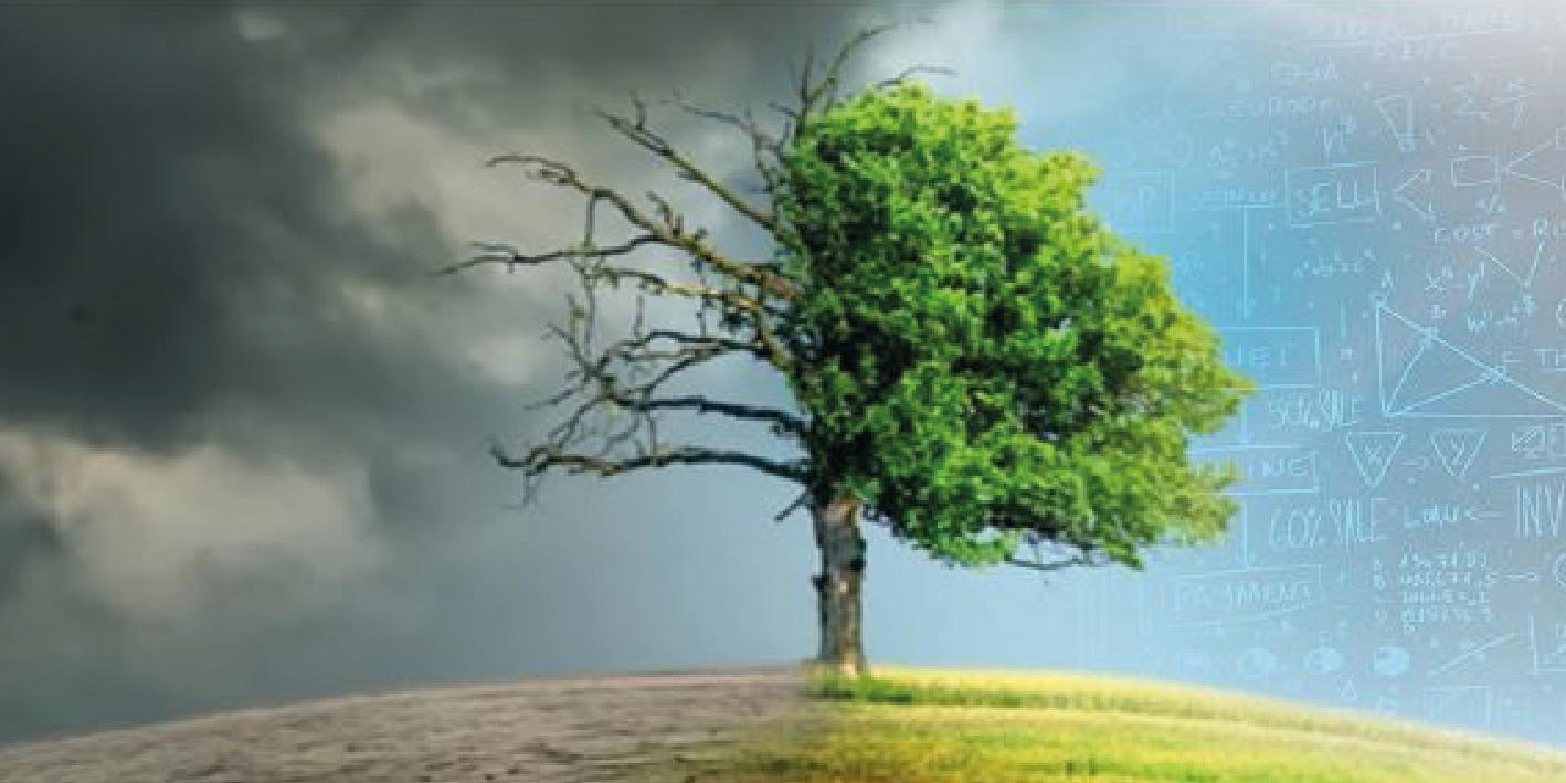 Strumenti matematici per la protezione dell'ambiente, del territorio e dei beni culturali. Giornata della FIMA