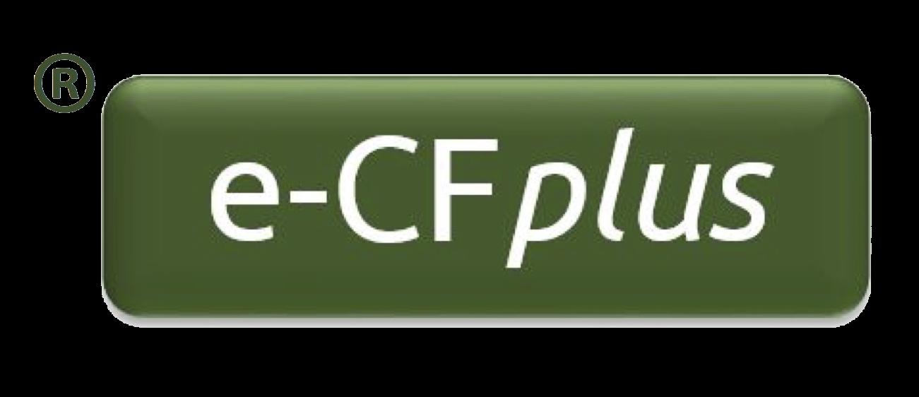 Il Frame europeo eCF per i professionisti digitali